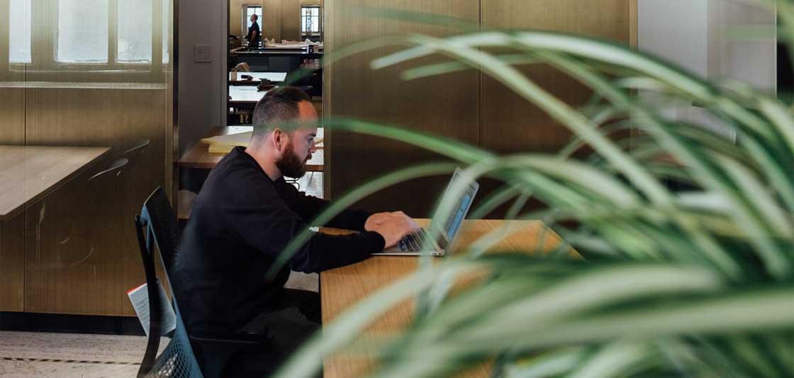 Voordelen planten op kantoor thuis De Duurzame Kaart