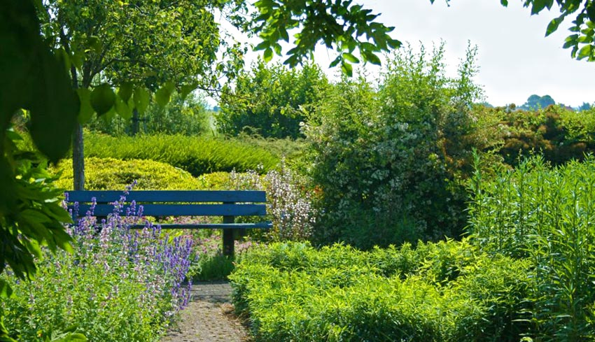 Cursus tuinonderhoud tuin kalender tuinieren milieuvriendelijk De Duurzame Kaart