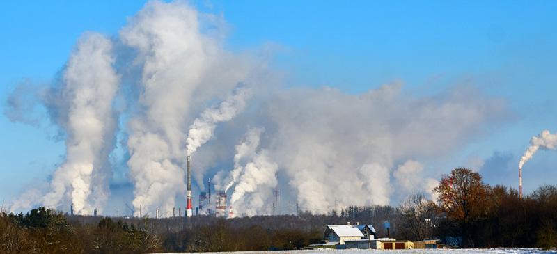 Milieu biodiversiteit klimaat productieprocessen grondstoffen