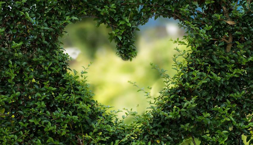 Tips voor een duurzame Valentijn