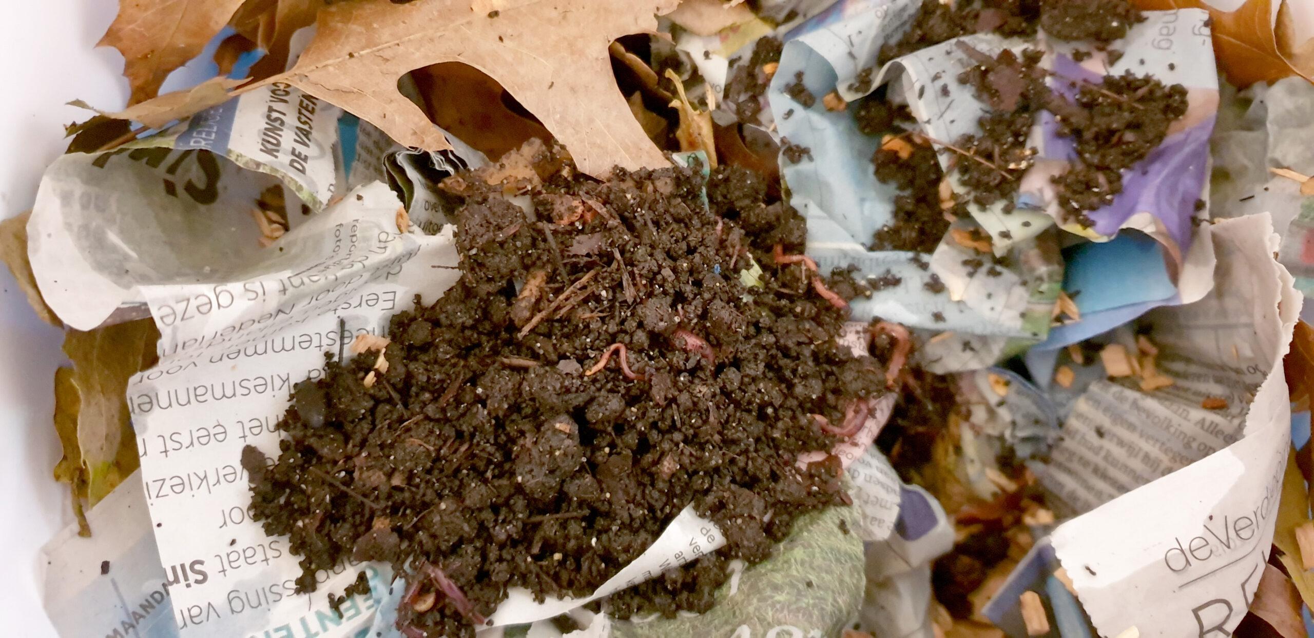 Tijgerwormen loslaten in zelfgemaakt wormenhotel