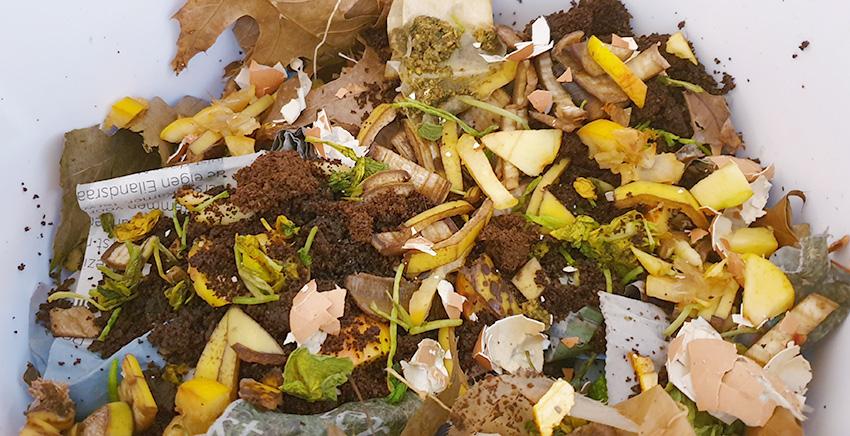 Wat doe je in een wormenhotel afval verminderen